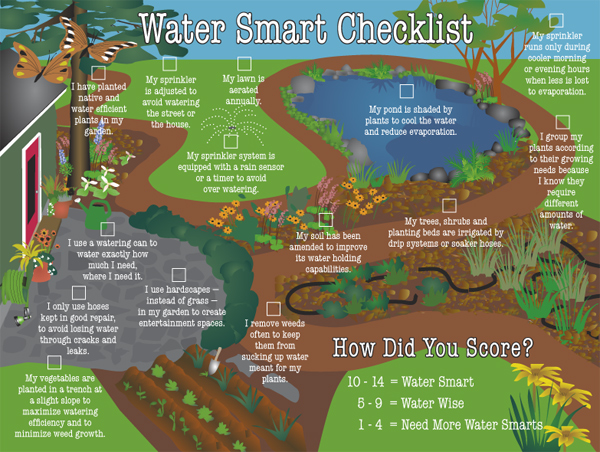 Check it out! Very cool infographic about watering your backyard.