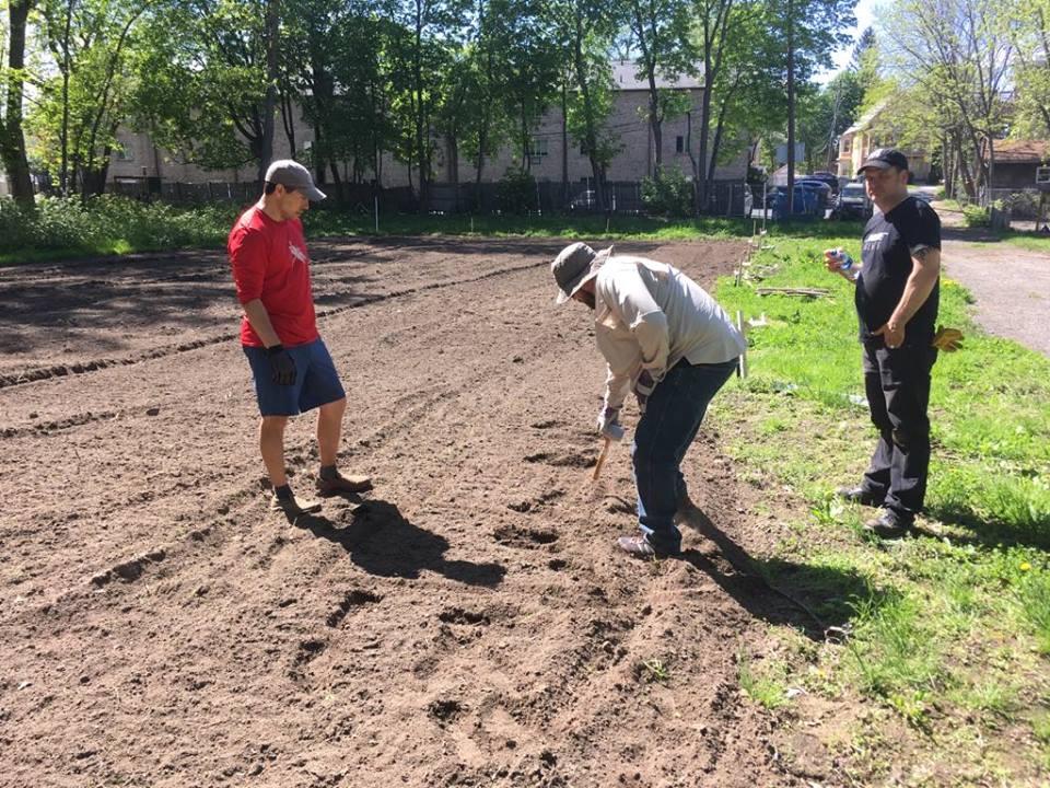 The Pratt Street Community Garden is a bountiful resource!