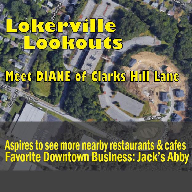 Diane clarks hill lane-01.jpg