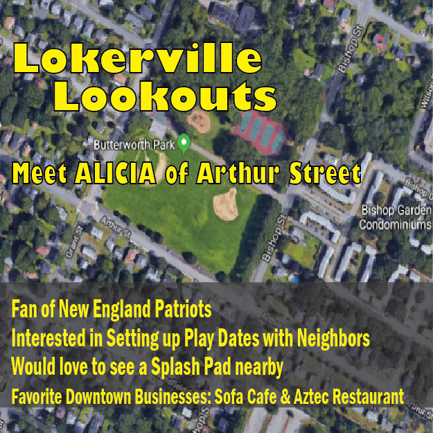 Discover more Lokerville Lookouts here.