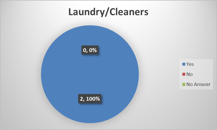 laundry cleaners.png
