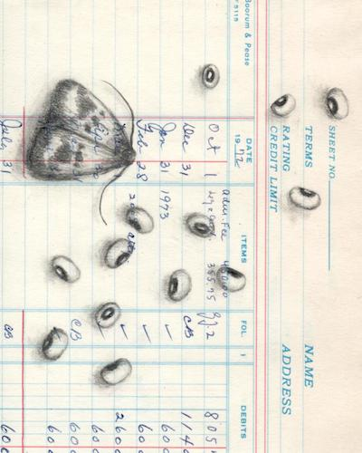 "Scattered   Copyright Terri Myers Wentzka 2015, all rights reserved.  Graphite on vintage ledger paper, 5 x 4""  SOLD"