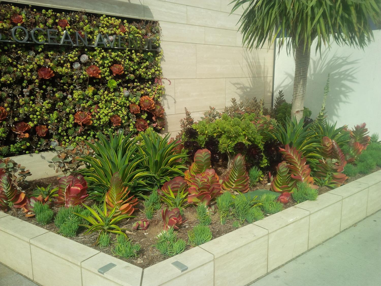 San diego landscape designers - Landscape Design San Diego Landscape Design