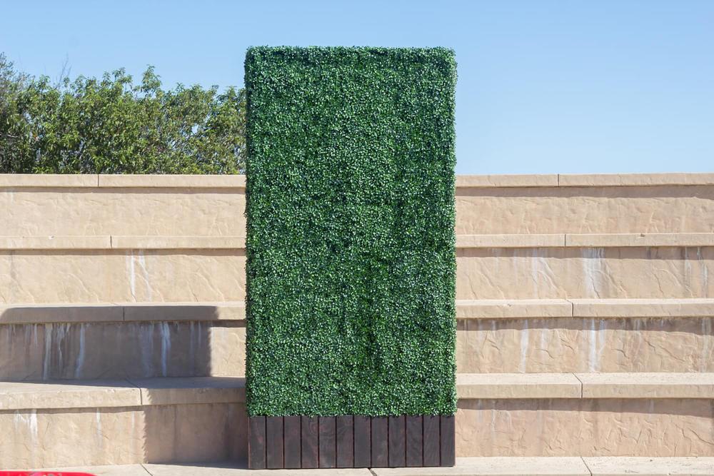 2 4x8 hedges.jpg