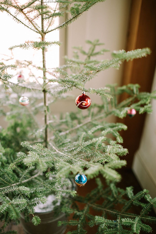 1118_ChristmasCozy_jamiemercuriophoto-14.jpg
