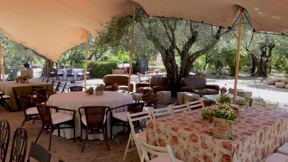 Alquiler de carpas para bodas al aire libre