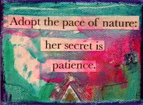 patiencequotes