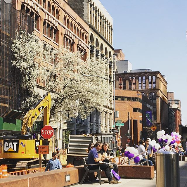 NYU accepted students day yesterday was amazing, with fabulous 70+ degree weather and so much eye candy! Great day! Today is Columbia... #acceptedstudentsday #nyutisch #nycvisit #spring2018