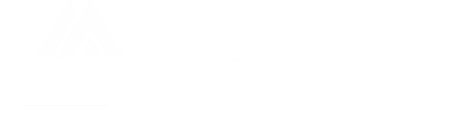 Silicon Valley Executive Search Agency | TRI Executive