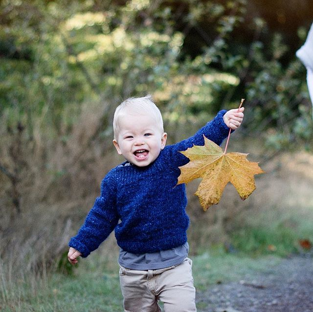 """Autumn carries more gold in its pocket than all the other seasons."" - Jim Bishop // Henning, reveling in the gold💫, family shoot."
