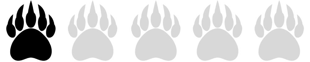 Bear Paws 1.jpg