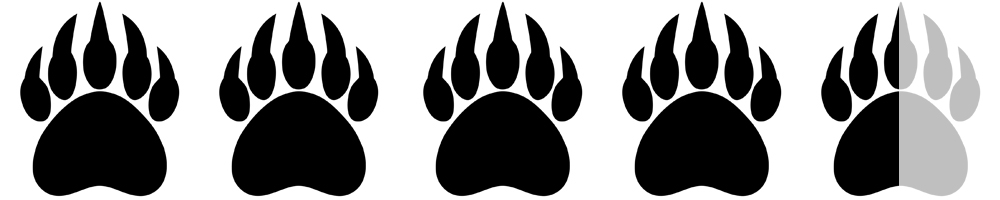 Bear+Paws 4.5.jpg