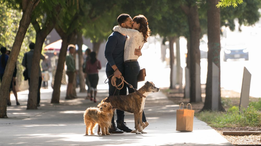 Give Your Puppy a Hug Right Now: A 'Dog Days' Film Review  by Will Lindus