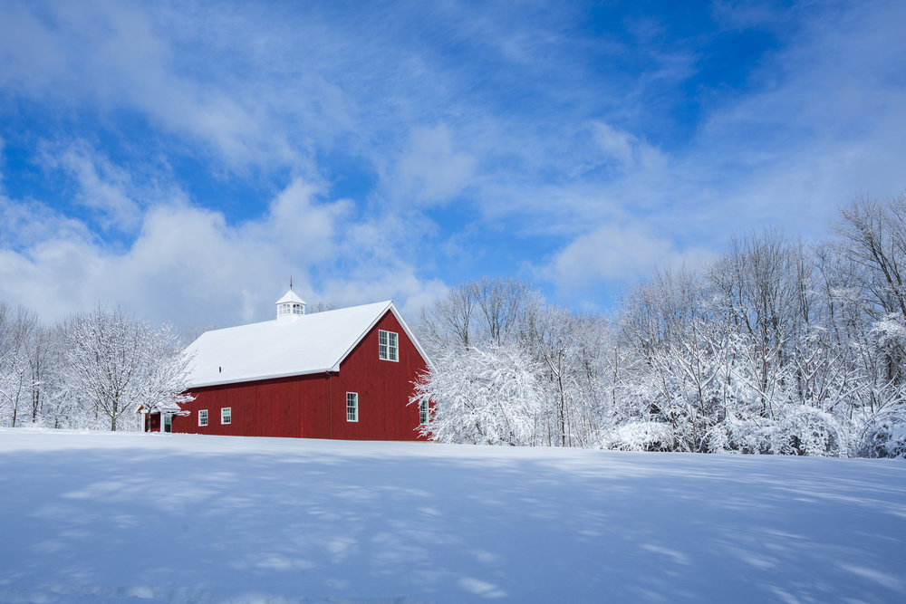 Minnesota Estate Recovery -