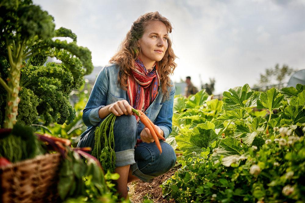Growing Future Farmers: - Minnesota's Beginning Farmer Tax Credit
