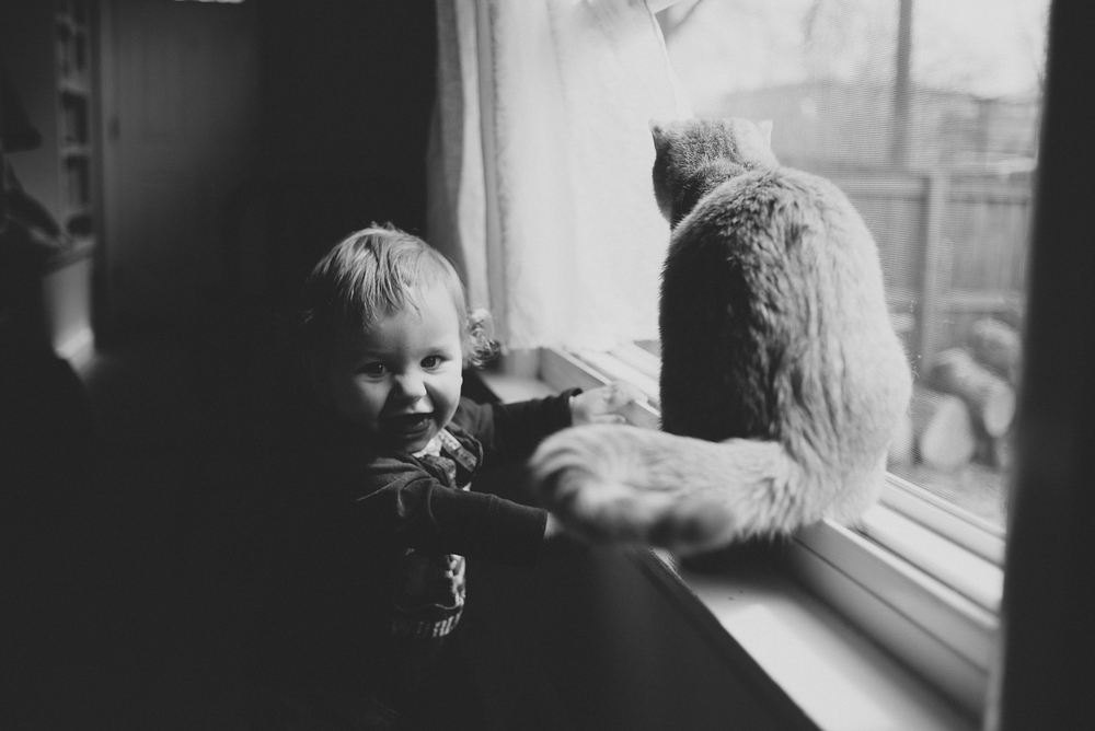 gus-and-tito-in-window-4.jpg