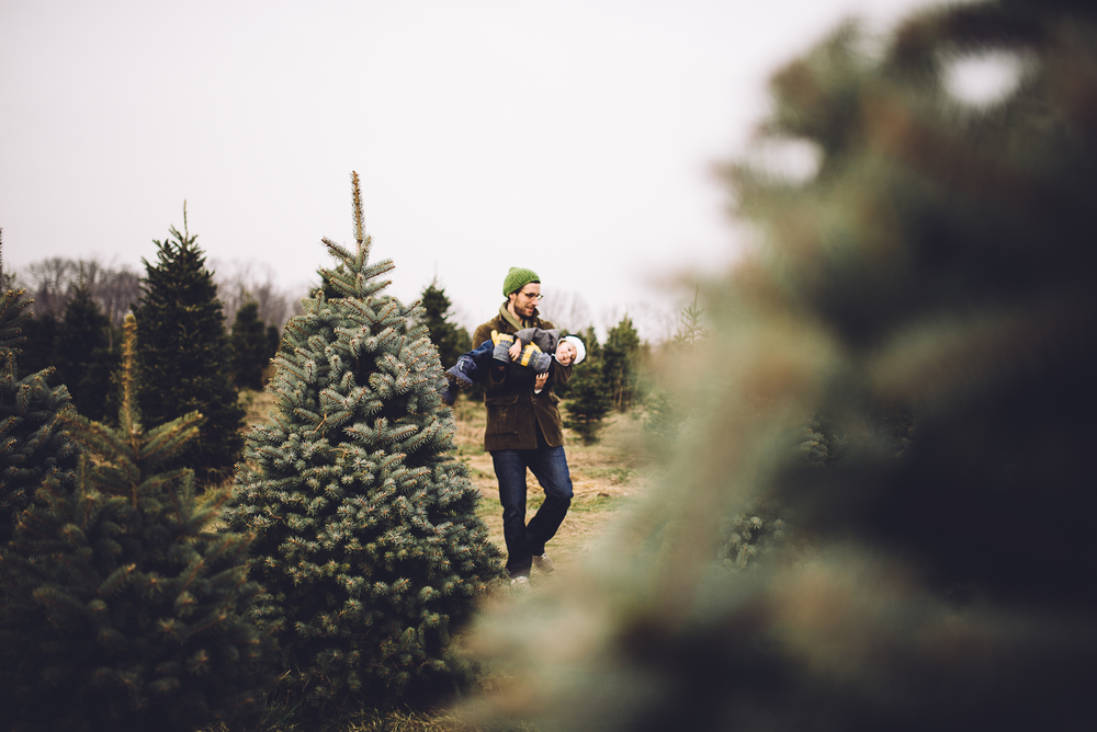 christmas-tree-cutting-6.jpg