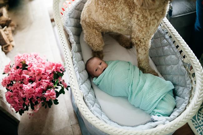 zita-newborn-BLOG-33.jpg
