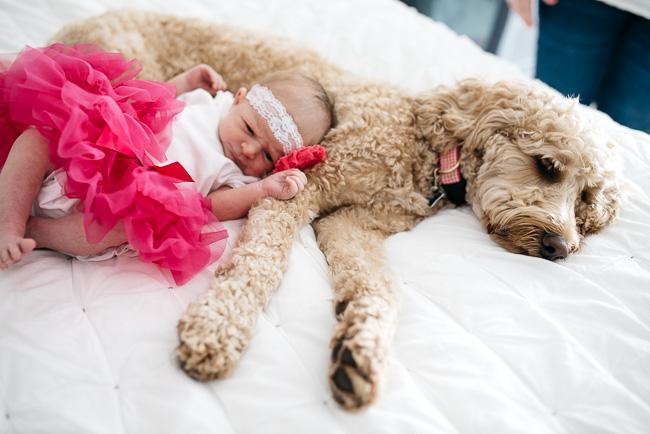 zita-newborn-BLOG-41.jpg