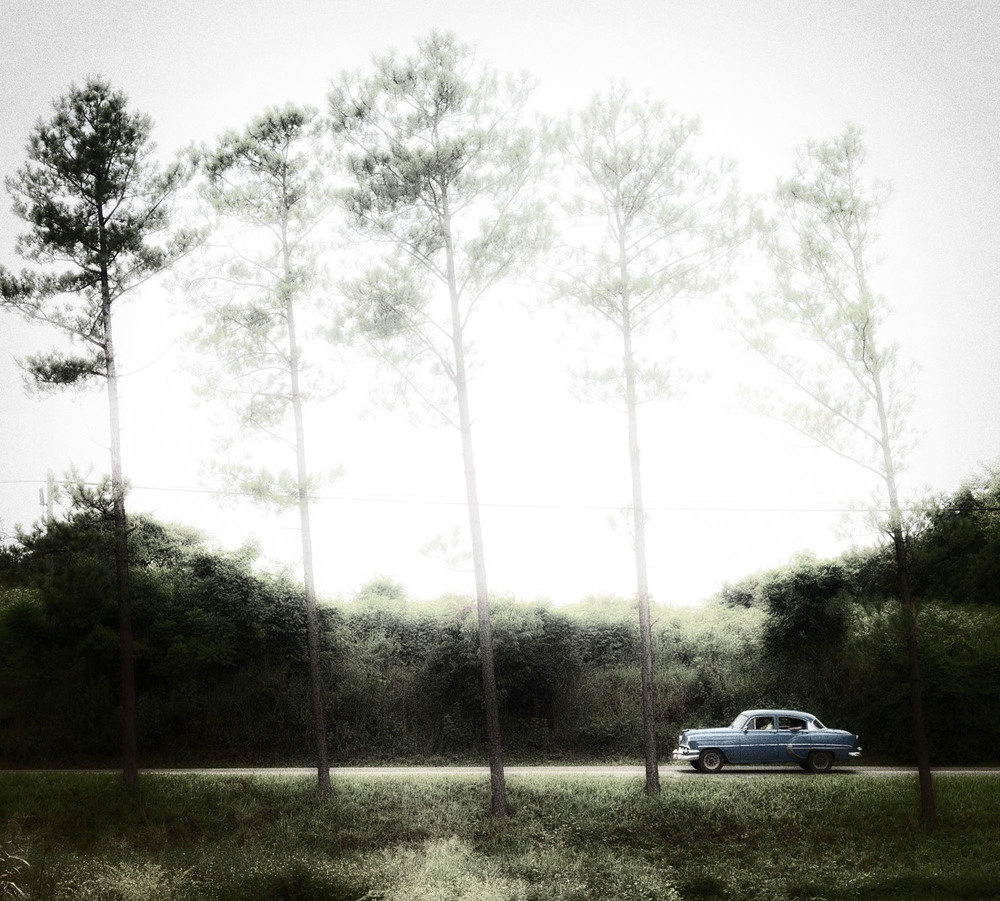 Elisabeth_Cars424.jpg