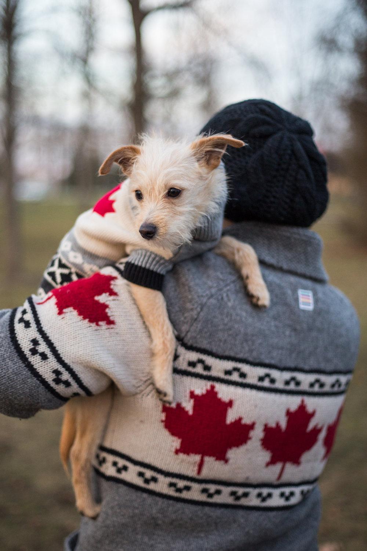Toronto_Ontario_Tatamagoche_Nova-Scotia_-Bolandia-1498.jpg