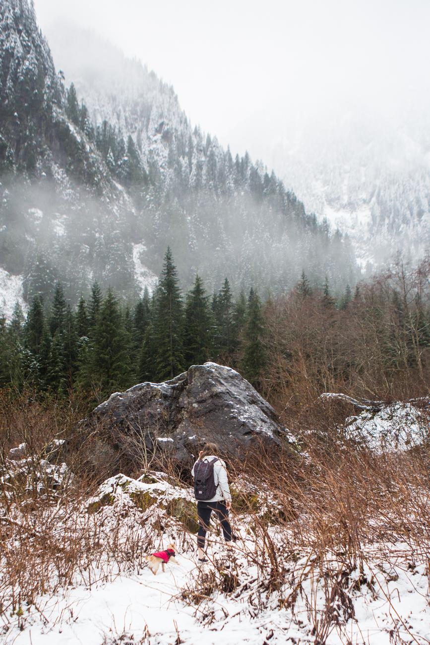 Bolandia-Blogger-Vancouver-Alder-Flats-Hike-Golden-Ears-Park-00326.jpg