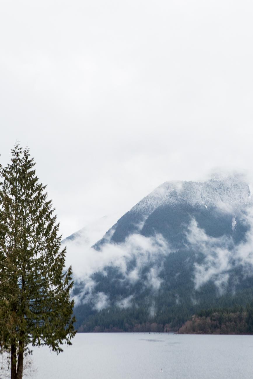 Bolandia-Blogger-Vancouver-Alder-Flats-Hike-Golden-Ears-Park-8073.jpg