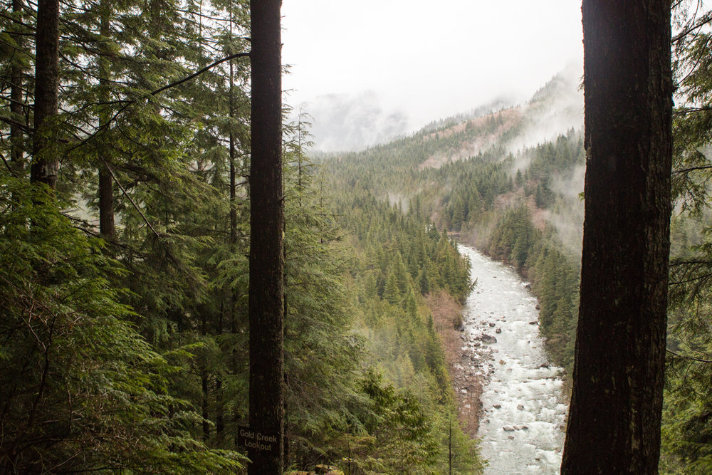 Bolandia-Blogger-Vancouver-Alder-Flats-Hike-Golden-Ears-Park-8117.jpg