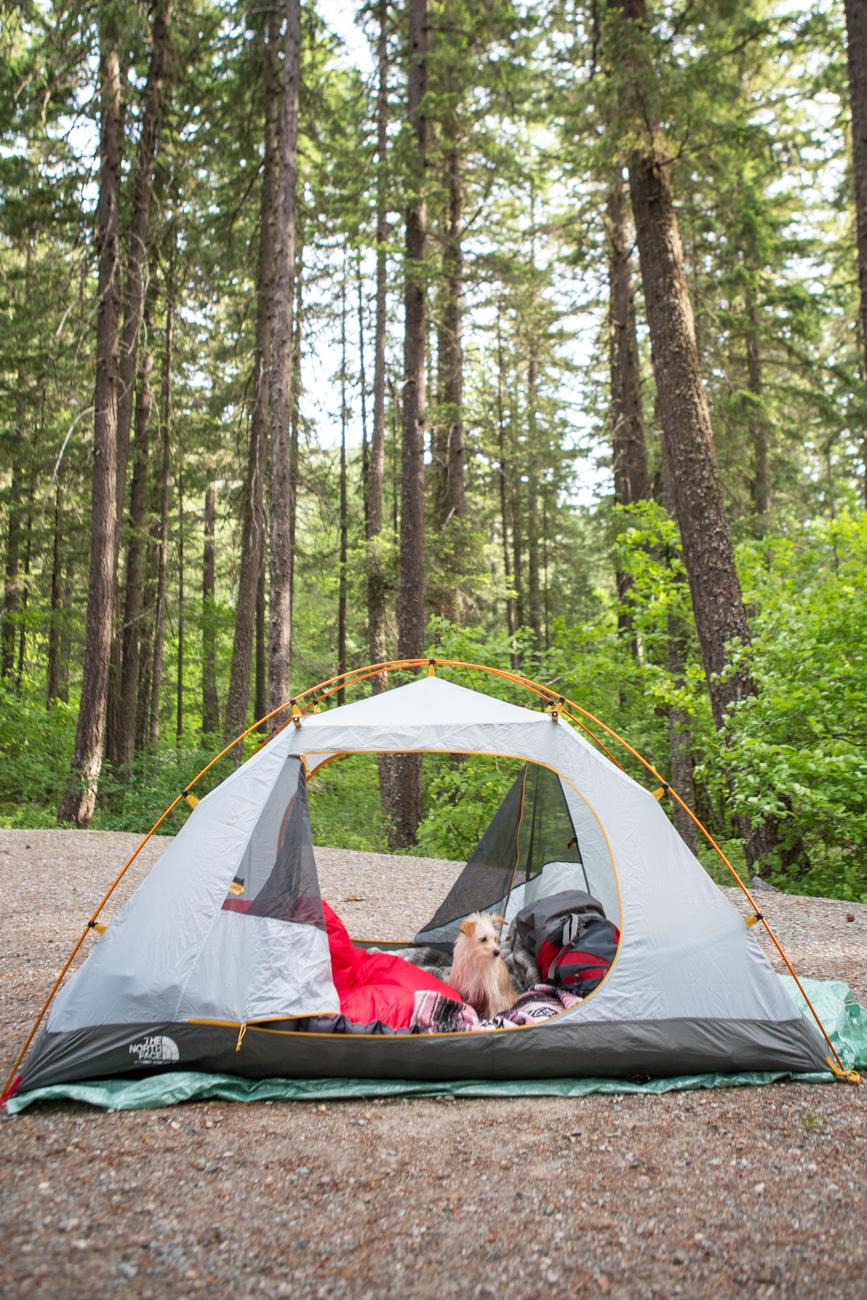 Bolandia-Blogger-Vancouver-Explore-BC-Hiking-Camping-Joffre-Lakes-Spring-Nairn-Falls-1763.jpg