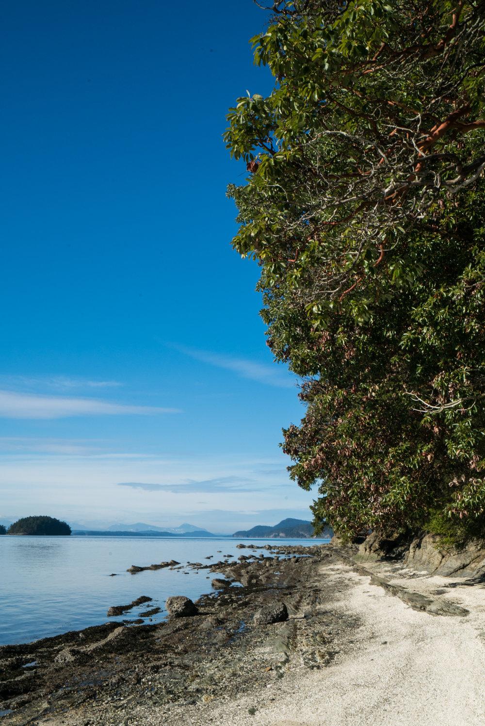 Galino-Island-Explore-BC-Bolandia-5-2.jpg