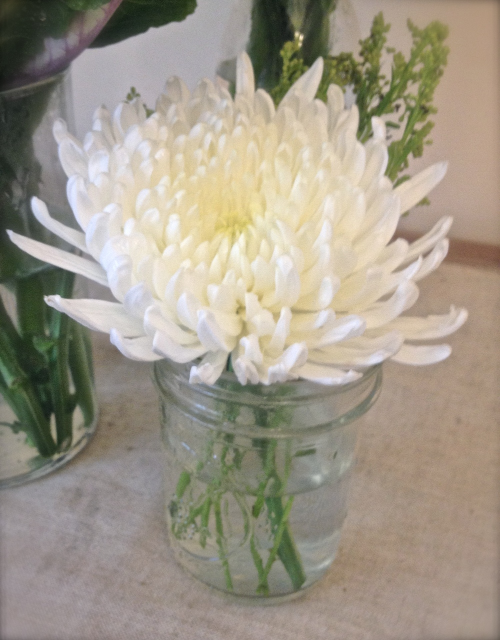 A single chrysanthemum enhances any table