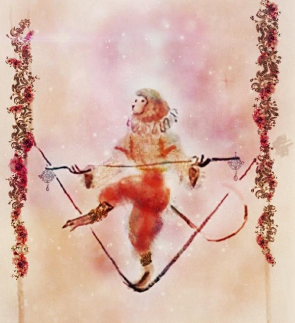circus monkey illustration