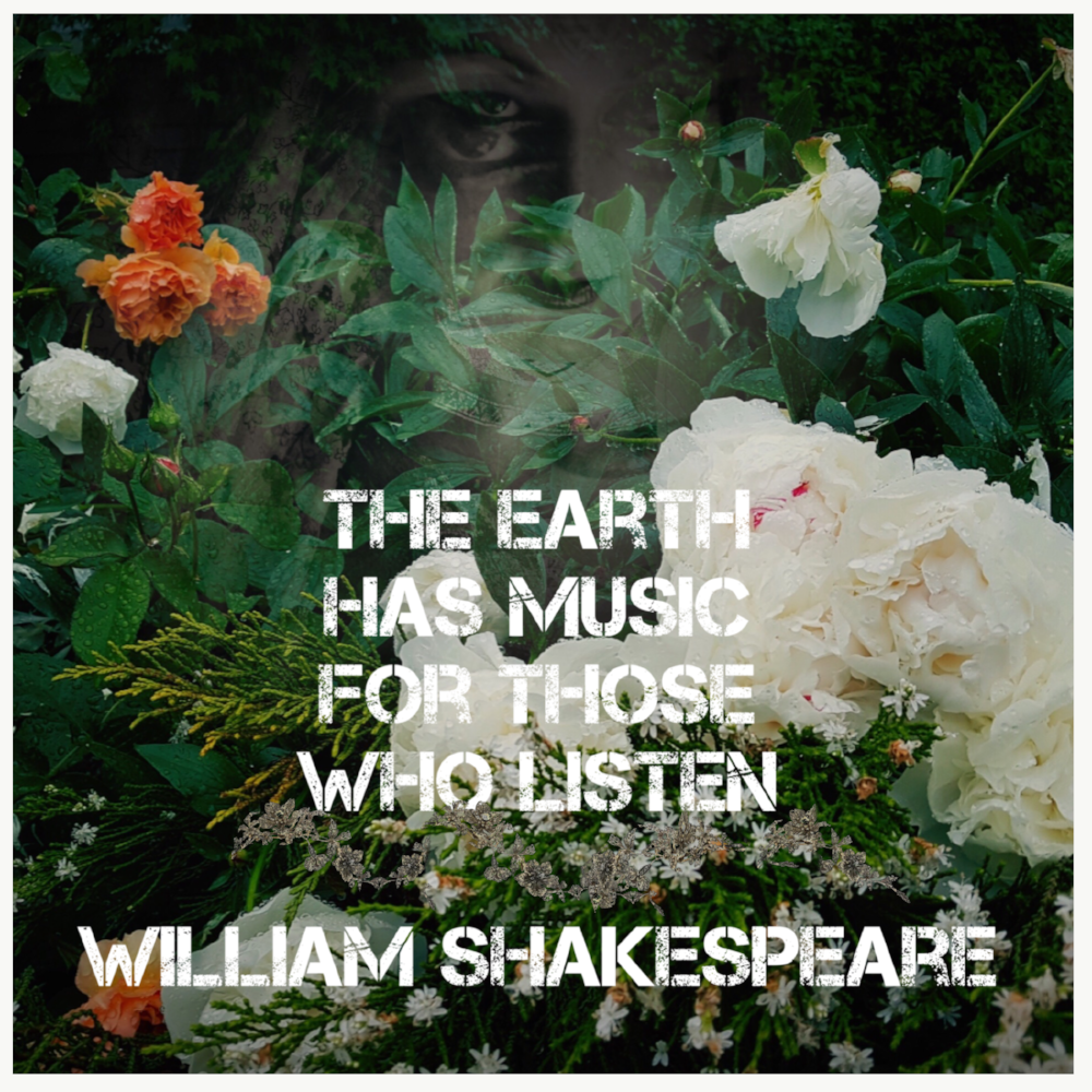 Shakespeare quote nature