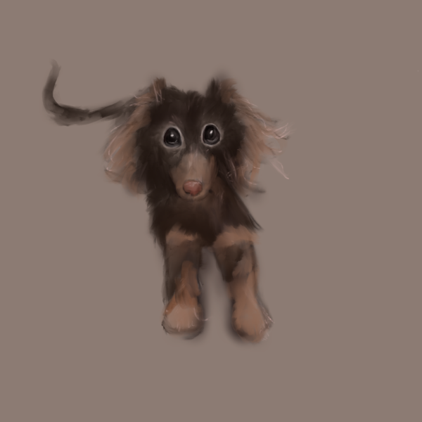 Dachshund Puppy Illustration