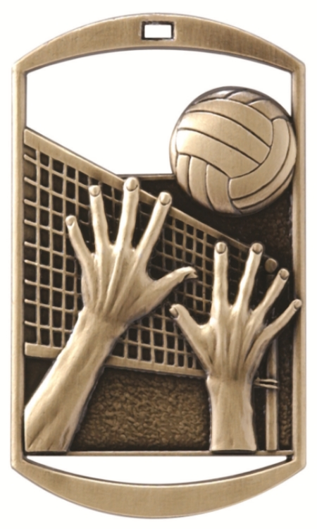 Volleyball   - DT-224