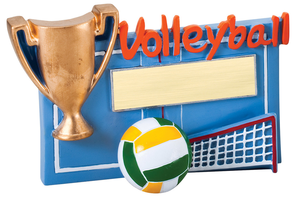 "Volleyball -    RFC17 -  5.25"" wide x 3.5"" tall"