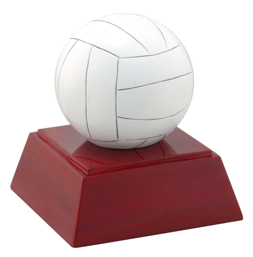 Volleyball - RC-419