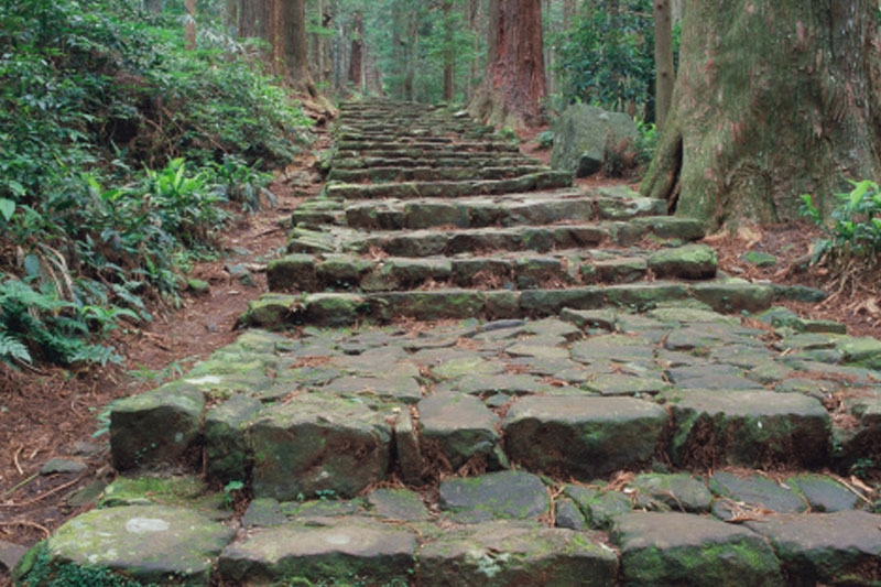 Is leadership    A Pilgrimage    Reflections from Japan's Kumano Kodo