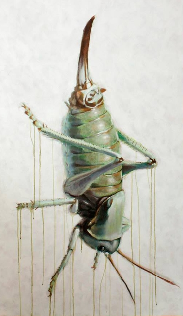 "Anabrus Simplex II 36x 60"" Acrylic on canvas  2013"
