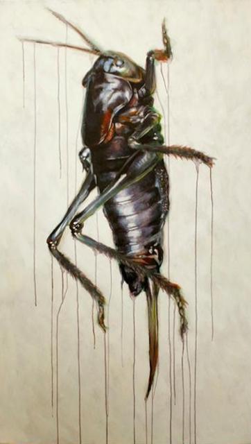 "Anabrus Simplex III 36x 60"" Acrylic on canvas  2013"