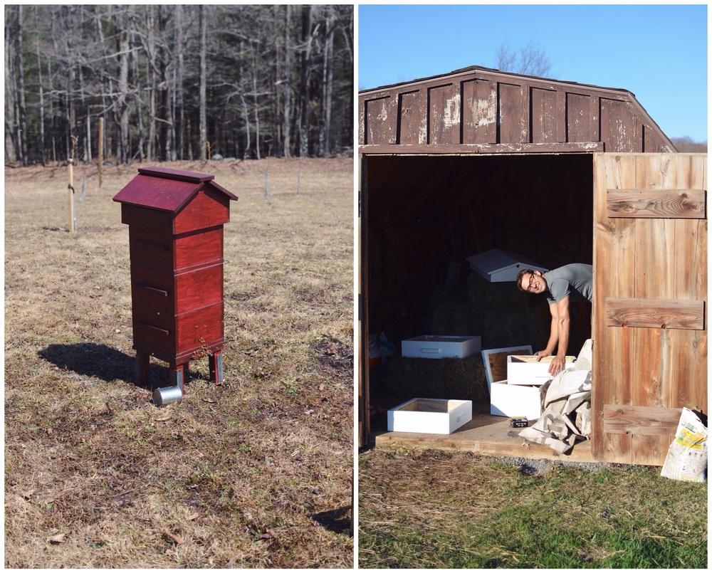 beehives.jpg