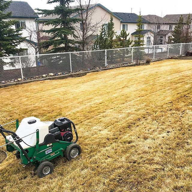 Shook off the rust today. Let the spring clean ups begin! . . . #landscaping #calgary #cochrane #yyc #yyclandscaping #calgarylandscaping #lawncare #familybusiness #shopyyc #smallbusinessyyc #lux #yycliving #yyclandscaping #maintenance #lawnmowing #trimming #sod #mulch #construction #fertilizer #customerservice #customersfirst #family #springcleanup #powerrake #aerate