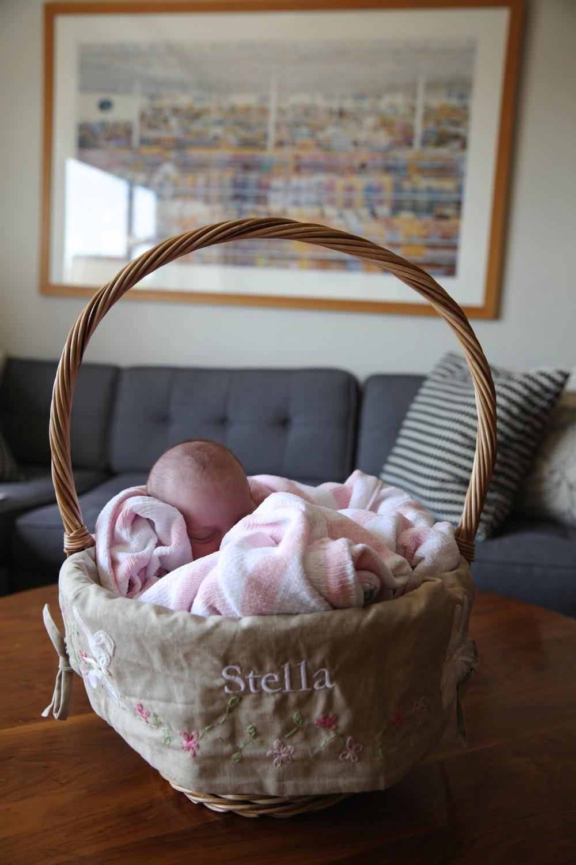 Stella_Basket1.jpg