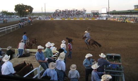 RB Rodeo chutes.JPG
