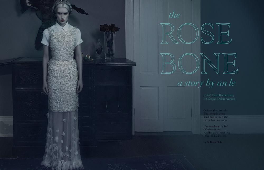 rose_bone_01.jpg
