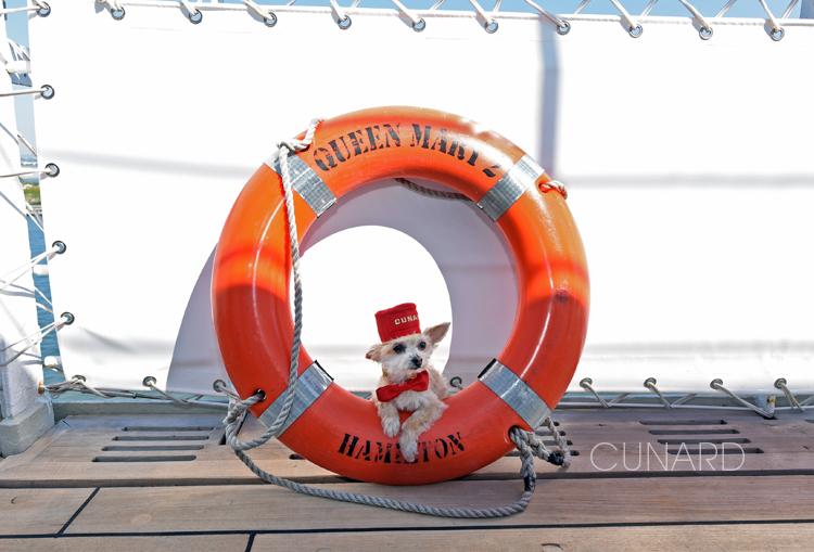 CunardDog.jpg