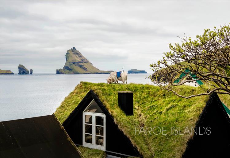 FaroeIslands1.jpg