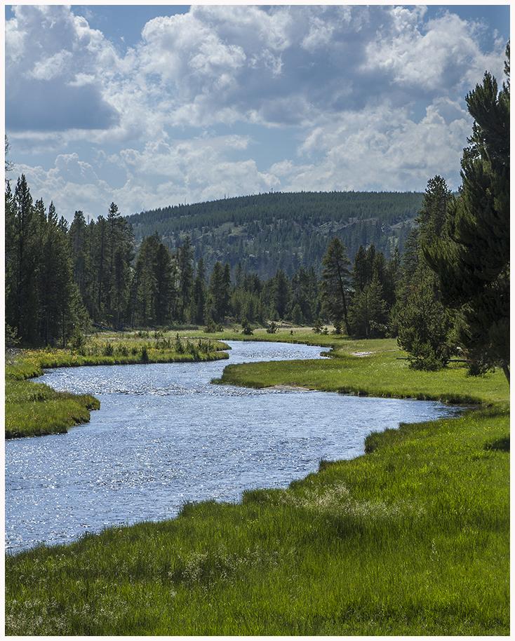 Nez Perse Creek, Yellowstone N.P. Wyoming