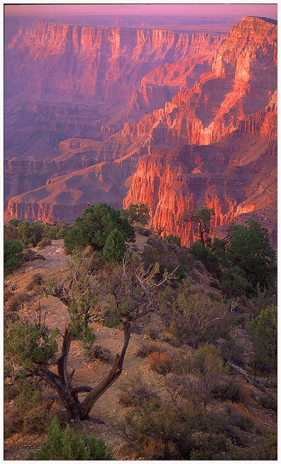 Grand Canyon N.P. Arizona
