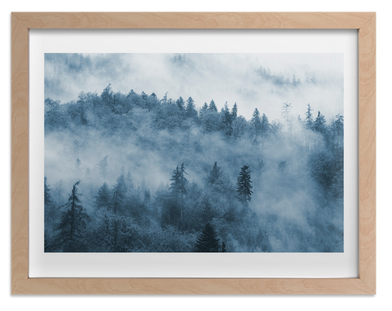 Misty Forest by lulu and isabelle